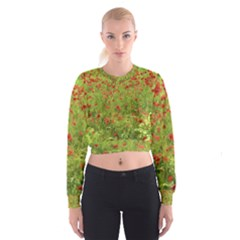 Poppy Vii Women s Cropped Sweatshirt