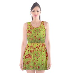 Poppy VIII Scoop Neck Skater Dress