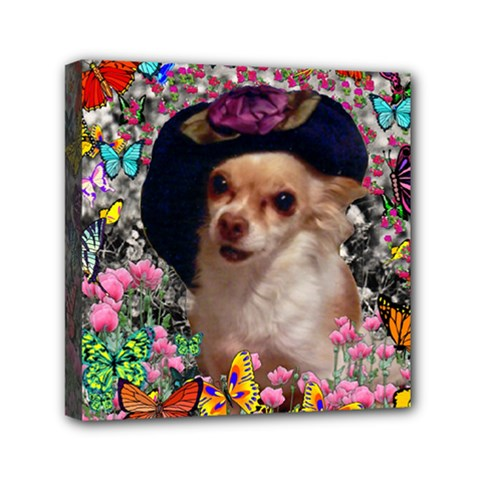 Chi Chi In Butterflies, Chihuahua Dog In Cute Hat Mini Canvas 6  x 6