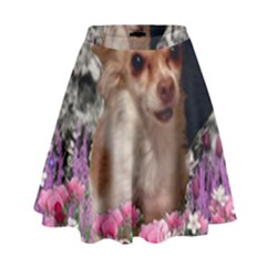 Chi Chi In Flowers, Chihuahua Puppy In Cute Hat High Waist Skirt