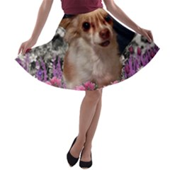 Chi Chi In Flowers, Chihuahua Puppy In Cute Hat A Line Skater Skirt
