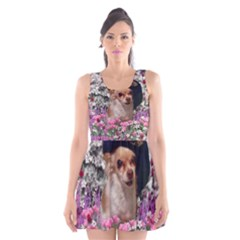 Chi Chi In Flowers, Chihuahua Puppy In Cute Hat Scoop Neck Skater Dress