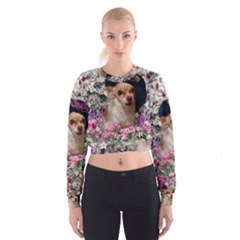 Chi Chi In Flowers, Chihuahua Puppy In Cute Hat Women s Cropped Sweatshirt