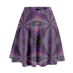 Learn Truth High Waist Skirt