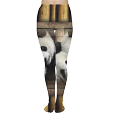 Panda Love Tights