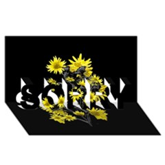 Sunflowers Over Black SORRY 3D Greeting Card (8x4)
