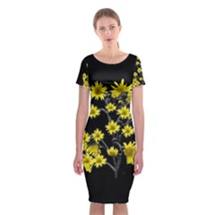 Sunflowers Over Black Classic Short Sleeve Midi Dress