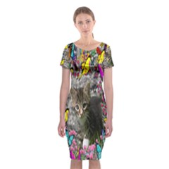 Emma In Butterflies I, Gray Tabby Kitten Classic Short Sleeve Midi Dress