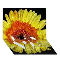 Yellow Flower Close up LOVE Bottom 3D Greeting Card (7x5)