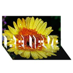 Yellow Flower Close up BELIEVE 3D Greeting Card (8x4)