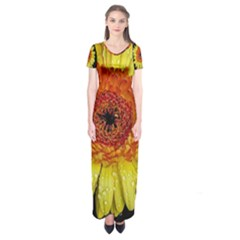 Yellow Flower Close Up Short Sleeve Maxi Dress