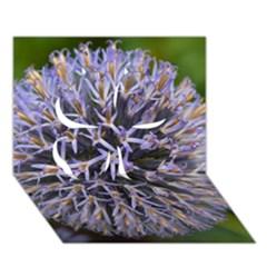 Globe Mallow Flower Clover 3D Greeting Card (7x5)