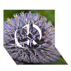 Globe Mallow Flower Peace Sign 3d Greeting Card (7x5)