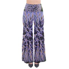 Globe Mallow Flower Pants