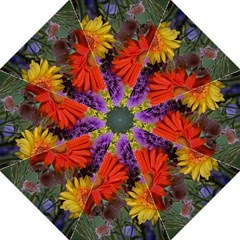 Colorful Flowers Hook Handle Umbrellas (Medium)