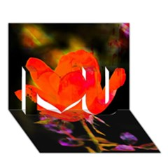 Red Beauty I Love You 3D Greeting Card (7x5)