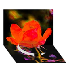 Red Beauty Circle Bottom 3D Greeting Card (7x5)