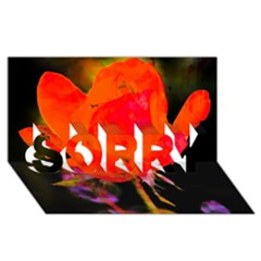 Red Beauty SORRY 3D Greeting Card (8x4)