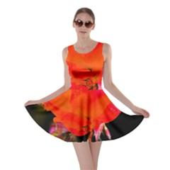 Red Beauty Skater Dress