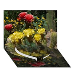 Cactus Flowers With Reflection Pool Heart Bottom 3d Greeting Card (7x5)