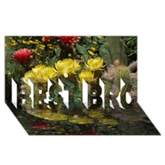 Cactus Flowers with Reflection Pool BEST BRO 3D Greeting Card (8x4)