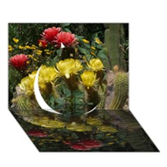 Cactus Flowers with Reflection Pool Circle 3D Greeting Card (7x5)