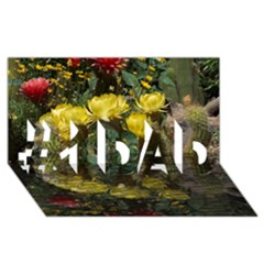 Cactus Flowers with Reflection Pool #1 DAD 3D Greeting Card (8x4)