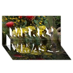 Cactus Flowers with Reflection Pool Merry Xmas 3D Greeting Card (8x4)