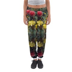 Cactus Flowers with Reflection Pool Women s Jogger Sweatpants