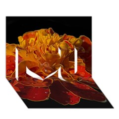 Marigold on Black I Love You 3D Greeting Card (7x5)