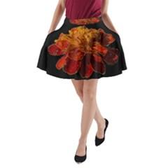 Marigold on Black A-Line Pocket Skirt
