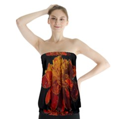 Marigold on Black Strapless Top