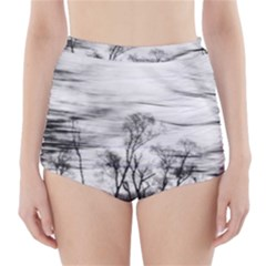 B&W Treescape High-Waisted Bikini Bottoms