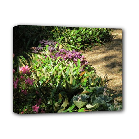 Shadowed ground cover Deluxe Canvas 14  x 11