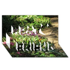 Shadowed ground cover Best Friends 3D Greeting Card (8x4)