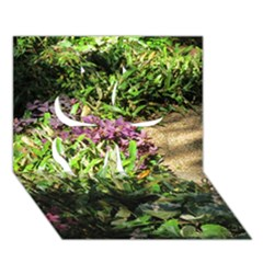 Shadowed ground cover Clover 3D Greeting Card (7x5)