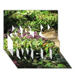 Shadowed ground cover Get Well 3D Greeting Card (7x5)