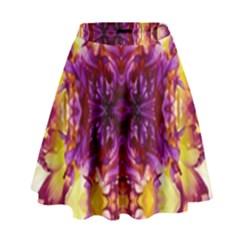 0211005007 Kellyville High Waist Skirt