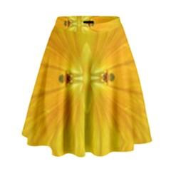 Maryland Lit0211013001 High Waist Skirt