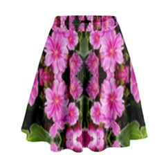 Raleigh Lit0210007011 High Waist Skirt