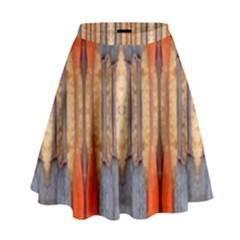 Washington Lit140415001002 High Waist Skirt