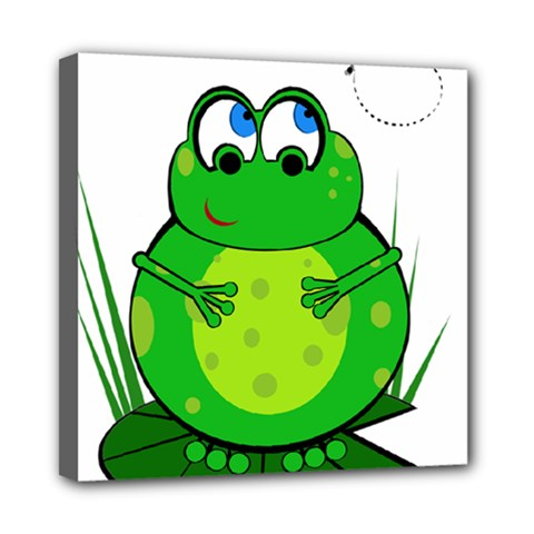 Green Frog Mini Canvas 8  x 8