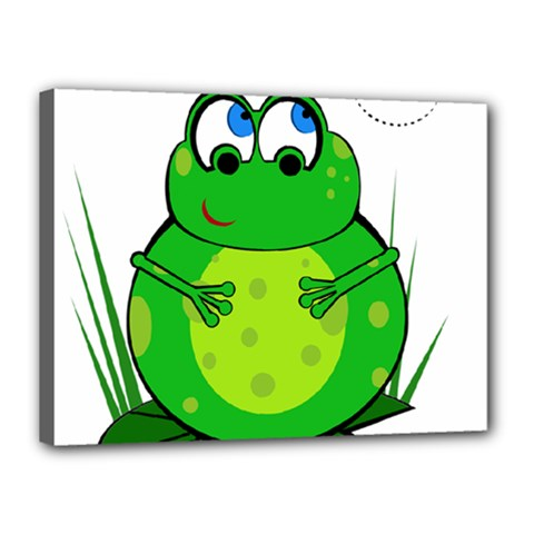 Green Frog Canvas 16  x 12