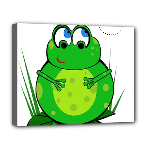 Green Frog Deluxe Canvas 20  X 16