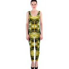 Wethersfield Lit0611036013 OnePiece Catsuit