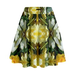 Wethersfield Lit0611036013 High Waist Skirt