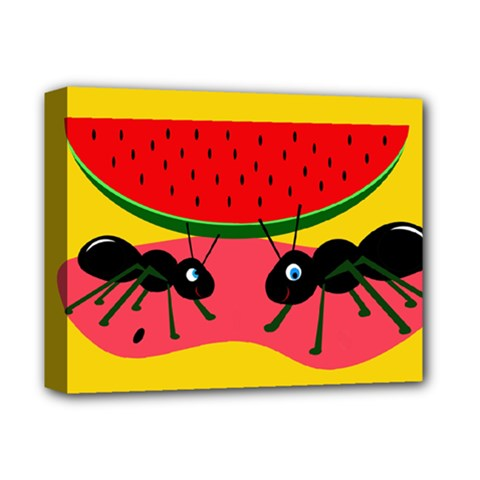 Ants and watermelon  Deluxe Canvas 14  x 11