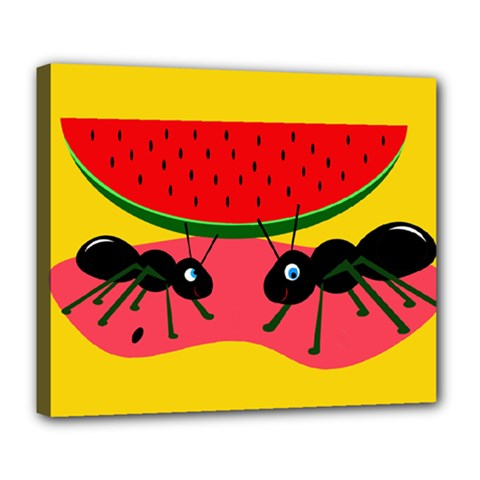 Ants and watermelon  Deluxe Canvas 24  x 20