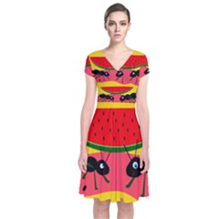 Ants And Watermelon  Short Sleeve Front Wrap Dress