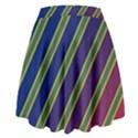 Decorative lines High Waist Skirt View2